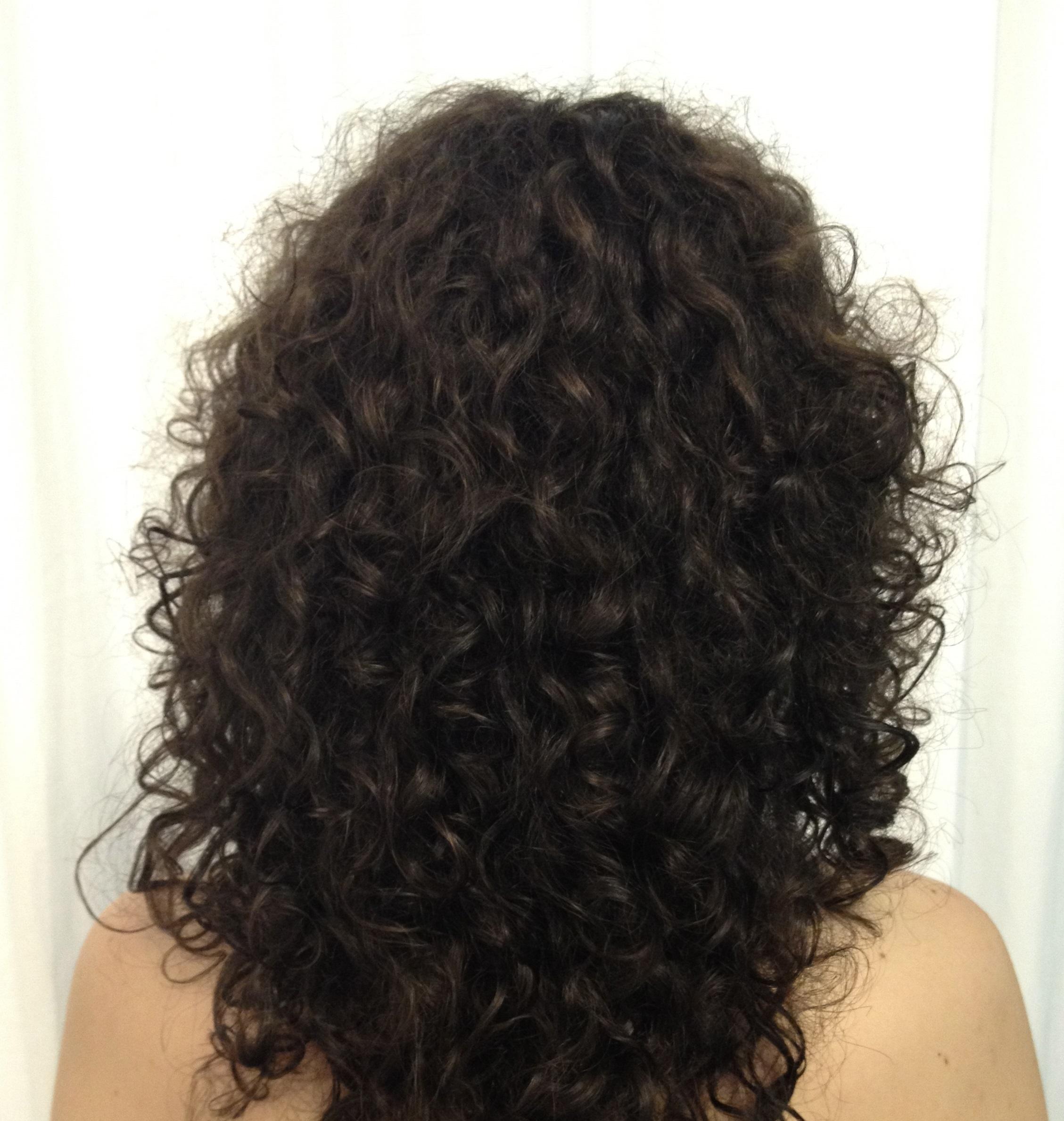 cynos bouncy curls